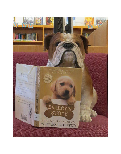 Boomer encourages reading!